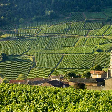 France in June:  Weather, Things to See and Travel Tips