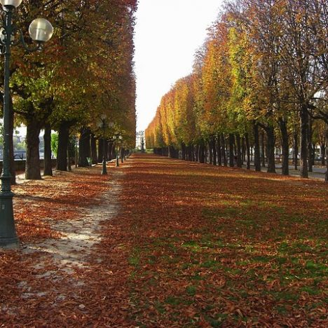 France in November: Weather, Things to See and Travel Tips