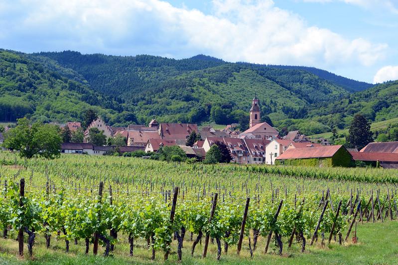 Alsace Wine Route Riquewihr